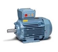 มอเตอร์ไฟฟ้า ABB รุ่น Hazardous area (ABB Low Voltage Motor - Motors and Generators for Hazardous area) โดยบริษัท มูฟ เอ็นจิเนียริ่ง จำกัด (Move Engineering)