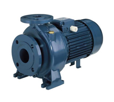 ตัวแทนจำหน่ายปั้มน้ำ EBARA รุ่น MD (Mono-block pump) ตัวถังเหล็กหล่อ โดย MOVE ENGINEERING