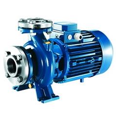 ตัวแทนจำหน่าย ร้านขายปลีก-ขายส่ง เสนอราคา เช็คราคาเครื่องสูบน้ำ-ปั๊มน้ำหอยโข่งอุตสาหกรรมหน้าแปลน FORAS รุ่น MN EN733 flange industrial centrifugal water pump ในประเทสไทย (THAILAND) ผลิตจากประเทศอิตาลิ