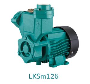 ตัวแทนจำหน่าย ร้านขายปลีก-ส่งเครื่องสูบน้ำ-ปั๊มน้ำใบพัดเฟืองไม่ต้องล่อน้ำ LEO LKSm126 (LEO LKSm126 domestic - self-priming peripheral pump) ในประเทศไทย
