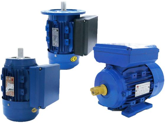 มอเตอร์ไฟฟ้า 1 เฟส MULLER (MULLER Electric Motor 1 Phase) โดย MOVE ENGINEERING