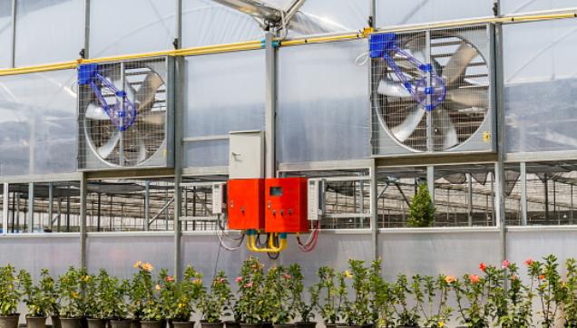 ตัวแทนจำหน่ายพัดลมฟาร์ม Agriculture Fan - พัดลมระบายอากาศ โดย มูฟ เอ็นจิเนียริ่ง - Move Engineering